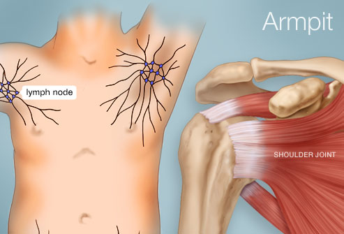 Armpit and lymph nodes